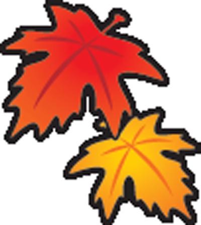 leaves-bhi